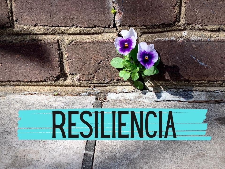Portada de resiliencia