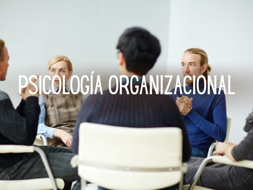 Portada de Psicología organizacional